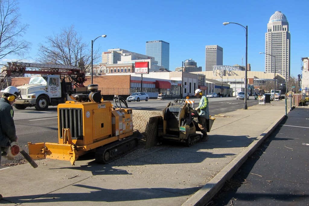 downtown Louisville stump removal
