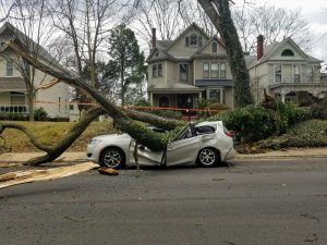storm damage in louisville